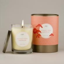Gift furniture Kobo Soy Candles- Mango Tree