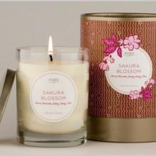 Gift furniture Kobo Soy Candles- Sakura Blossom